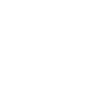 Daniela Costa Logo - White